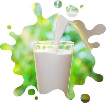 京・美山の牛乳